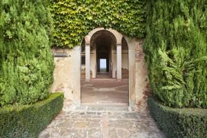 _MG_5396 come oggetto avanzato-1_la_paneretta_tuscany_wine